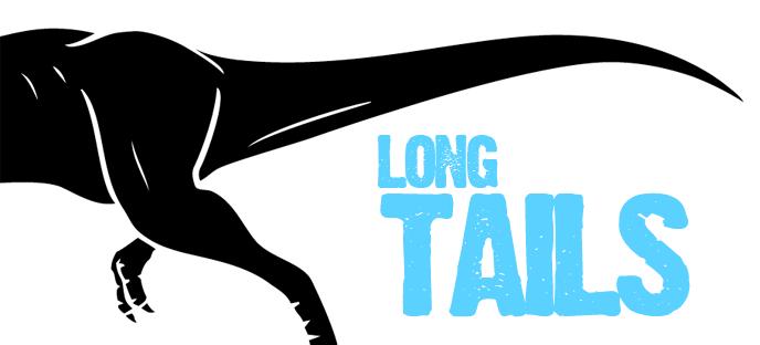 pozycjonowanie long-tail